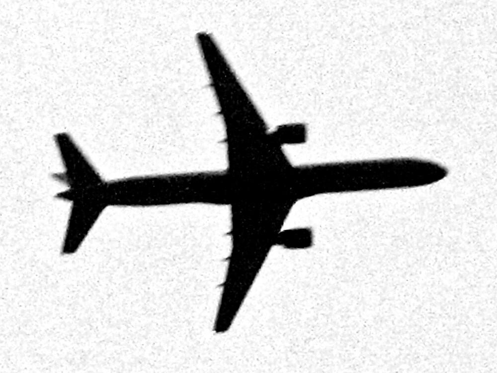 Plane by Tommy Seibold