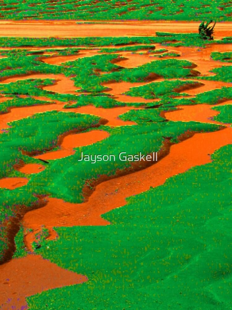 orange river by Jayson Gaskell