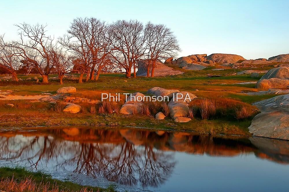 """Mirror Pool !!"" by Phil Thomson IPA"