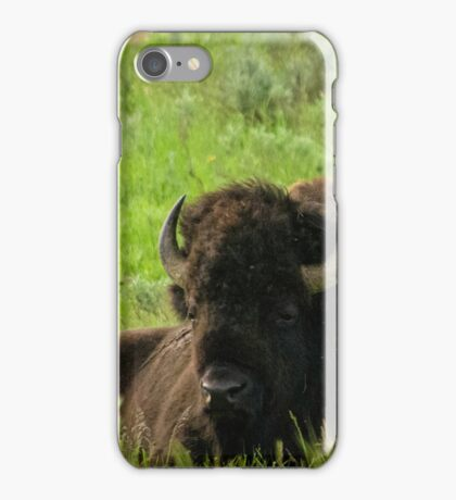 Bison chilling out iPhone Case/Skin