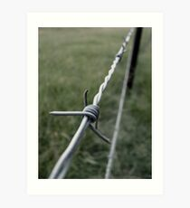 Barbed Art Print