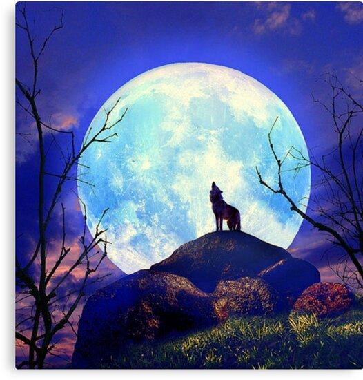 Lienzos Lobo Aullando A La Luna Noche Tono Azul De Avenged