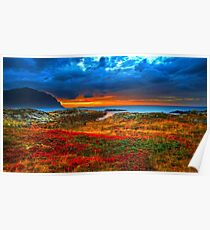 Beautiful Landscape - Sunset, Flower, Sea - Orange, Red, Green Poster