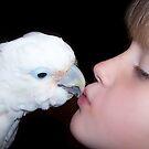 Cockatoo Kisses by byuchic