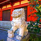 Asakusa Lion by haymelter