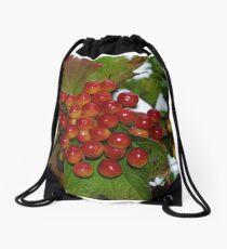 Very Berry Drawstring Bag