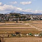 Mount Fuji, Japan by haymelter