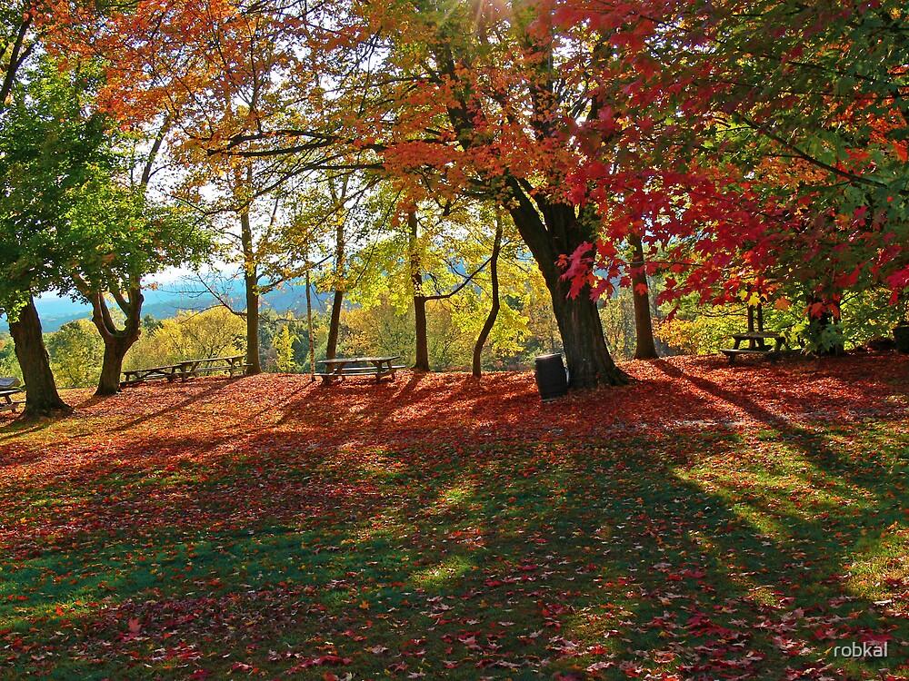 Autumn Shadows(2) by robkal