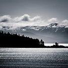 Forest Island - Alaska by Beth Wold