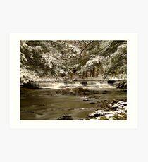 Snow Falls 1st Prize Winner Art Print