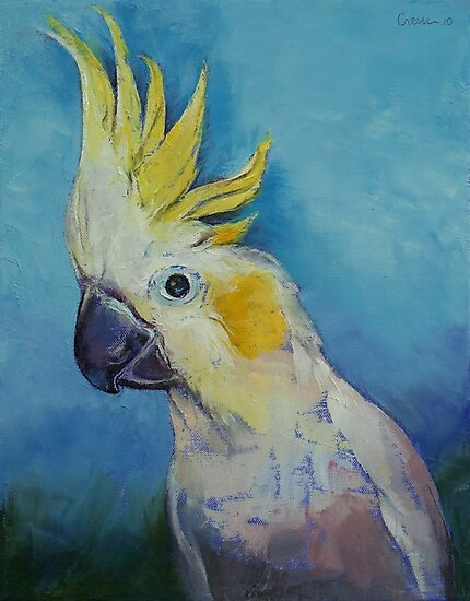 Cockatoo by Michael Creese
