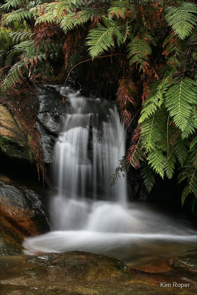 Leura Cascades - Blue Mountains, NSW by Kim Roper
