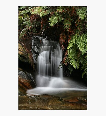 Leura Cascades - Blue Mountains, NSW Photographic Print