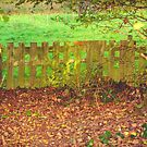 Wooden fence in autumn by 7horses