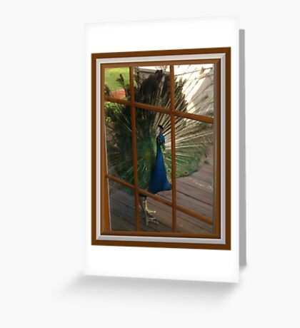 Won`t You Let Me In? Greeting Card