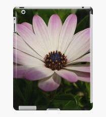 Side View of A Pink and White Osteospermum iPad Case/Skin