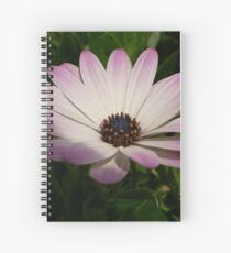 Side View of A Pink and White Osteospermum Spiral Notebook