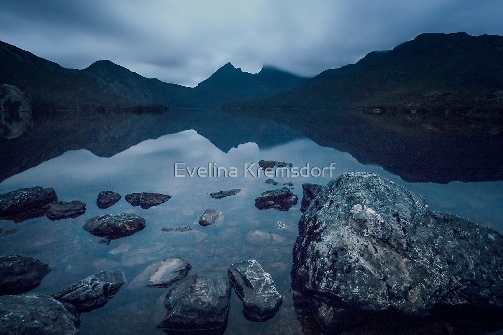 In The Light Of Dawn by Evelina Kremsdorf