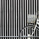 White Bike by Joumana Medlej