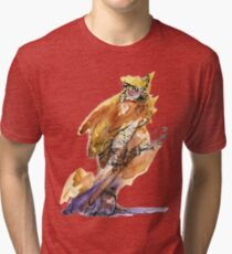 Owl and Guitar Tri-blend T-Shirt