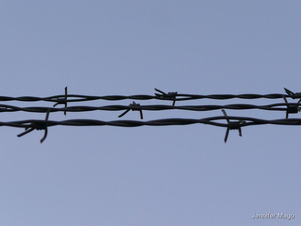 barb wire by Jennifer Mayo