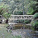 Creek Bridged by KazM