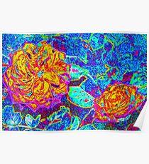 Vividly colored petals Poster
