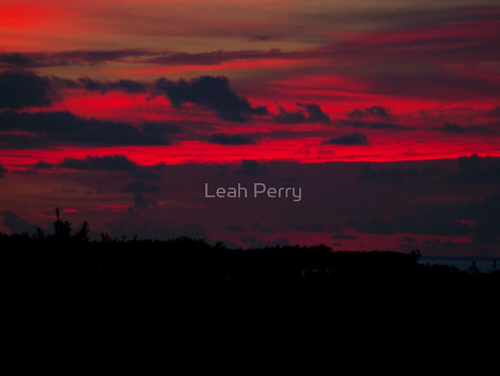 Red Sky at Night...Sailors Delight by Leah Perry