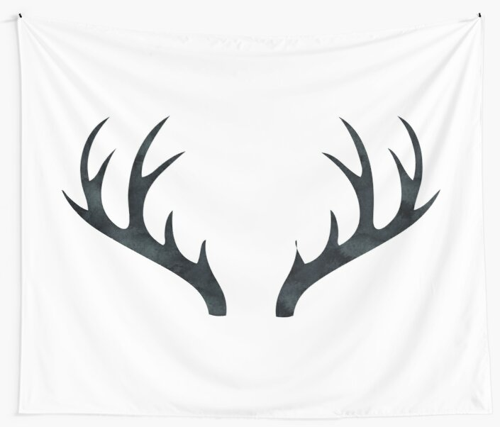 Antlers - Rustic Decor Black and White Deer Antlers by naturemagick
