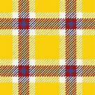 Clan McDuck Tartan by itsaduckblur