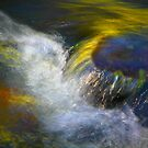 River and Light by Barbara  Brown