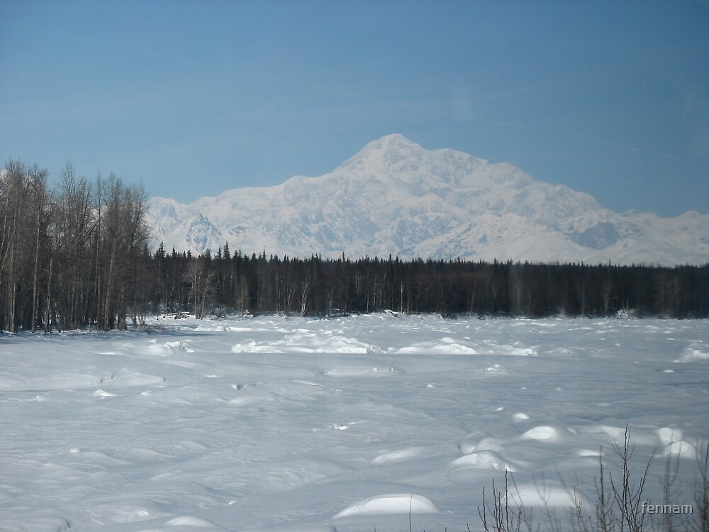 Mount McKinley Alaska from the Railroad  by fennam
