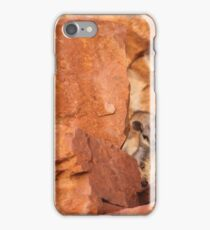 A Black-flanked Rock Wallaby iPhone Case/Skin