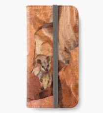 A Black-flanked Rock Wallaby iPhone Wallet/Case/Skin