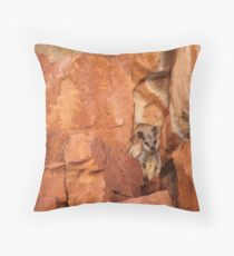 A Black-flanked Rock Wallaby Throw Pillow