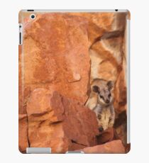 A Black-flanked Rock Wallaby iPad Case/Skin