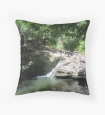 SWIMMING HOLE Throw Pillow