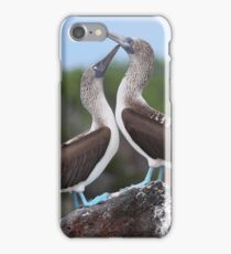A pair of Blue-footed Boobies iPhone Case/Skin