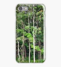 Tranquil Forest Glimpse iPhone Case/Skin