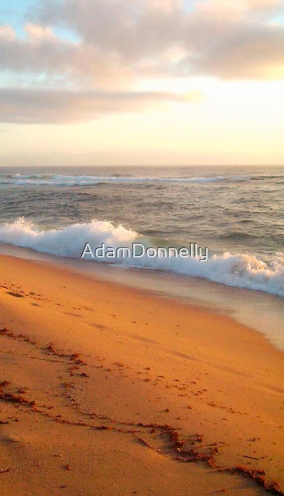 Shelly Beach by AdamDonnelly