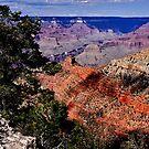 God's artistry - The Grand Canyon by Nancy Richard