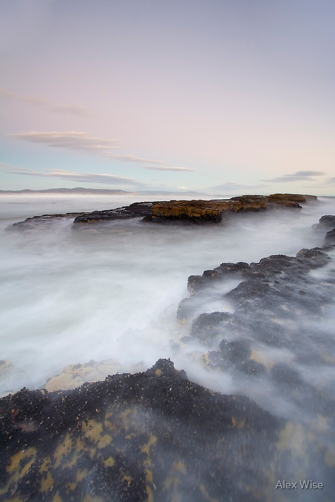 Rebounds, Tasmania by Alex Wise