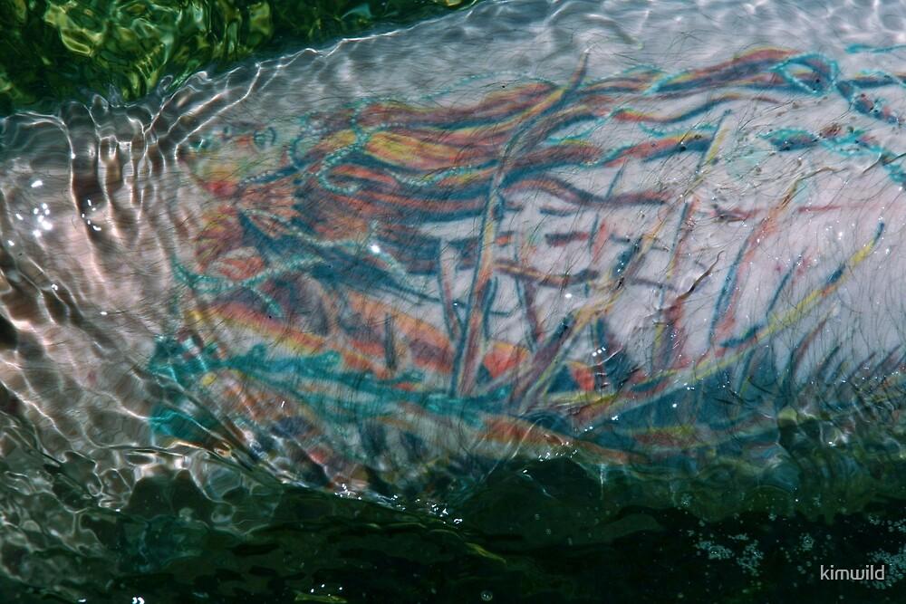 Tide Mermaid by kimwild