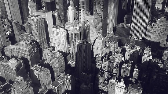 Manhattan, New York City, view from the Empire State Building, NYC  by Spallutos