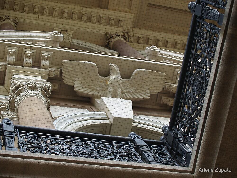 eagle eye view by Arlene Zapata