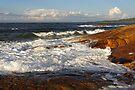 South West Rocks by Darren Stones