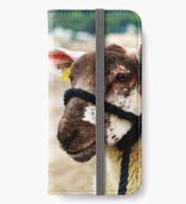 Nobby at the Beach iPhone Wallet/Case/Skin