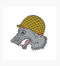 Grey Wolf Head Growling WW2 Helmet Drawing Photographic Print