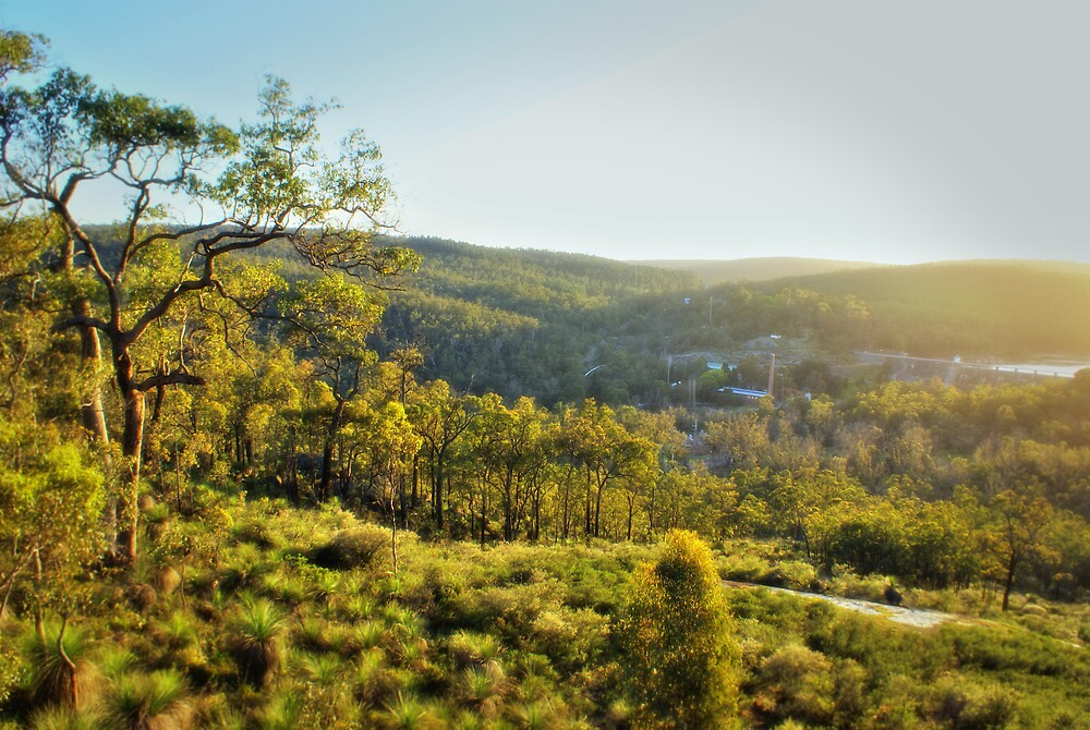 veiw from the south ledge by alistair mcbride