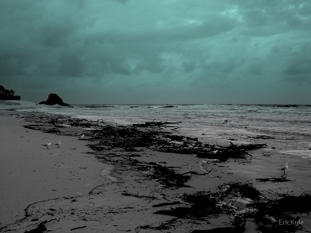STORM WRECKED BEACH by EricKyle